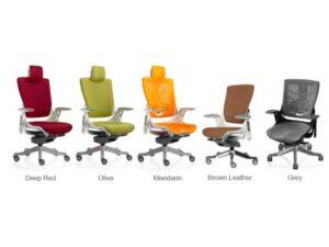 Different Colour Options
