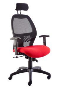 Xenon-Ergonomic-Office-Chair-Meshback